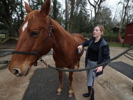 Adrienne LaPointe grooms her horse YotaSoho whom she