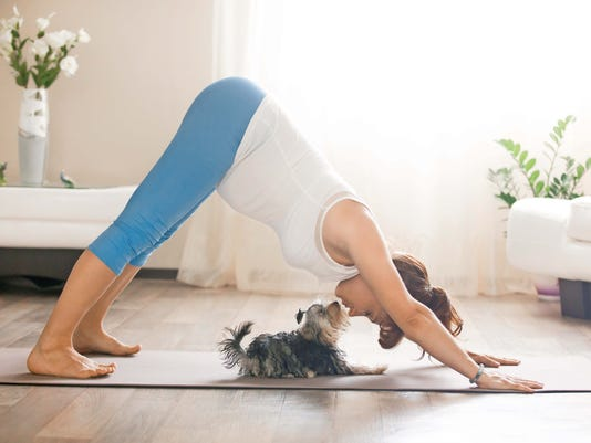 Try yoga with your dog