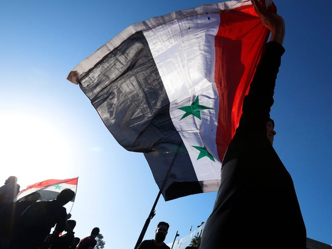 A Syrian government supporter holds up a Syrian national