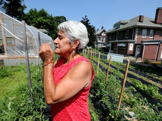 Martha Robles head of Catholic Charities Community Services of Rockland, smells fresh basil in the community garden that helped create July 3, 2018.  Robles has led the organization for the past twelve years and will be retiring this month. She considers the creation of the community garden one of proudest accomplishments.