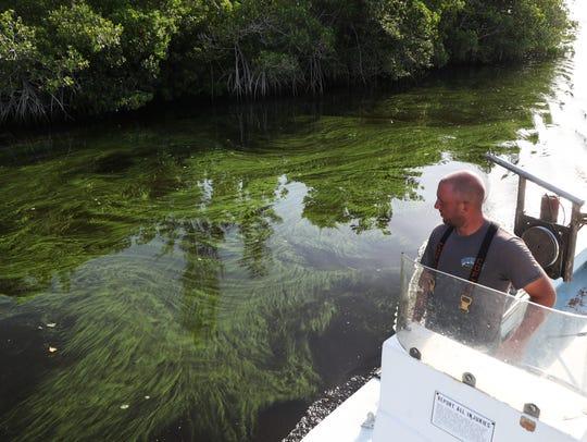 Joseph Pfeiffer, a blue crab fisherman for Island Crab