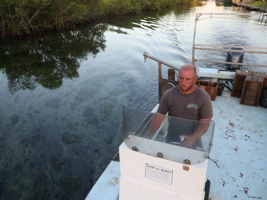 Joseph Pfeiffer, a blue crab fisherman for Island Crab say the harvests this year are down. He says the crabs are starting to move down the river towards the mouth. He believes they are getting away from the algae that is in the  Caloosahatchee River.