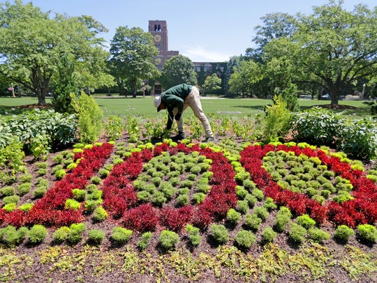 Ezekiel Combs, a landscaper with Kohler Landscape, works on cleaning up the shrubbery that makes the number 100 for the company's 100th anniversary at the American Club.