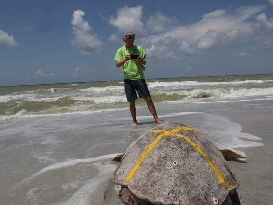 Southwest Florida Beaches Affected By Red Tide In Fort Myers Cape