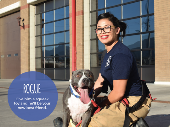 El Paso Firefighter Jacqueline Manriquez poses with Rogue for the 2018 calendar.