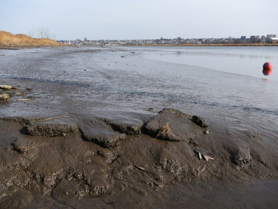The Hackensack River's sediment is laced with dozens of contaminants, the legacy of over a hundred years of industrial activity along its banks.