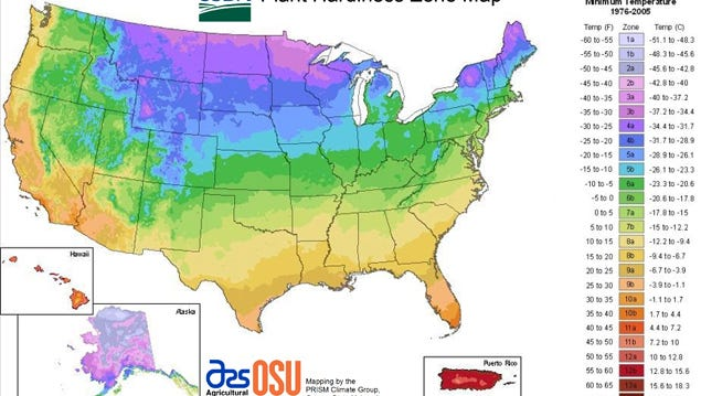 The USDA cold hardiness zone map shows average minimum winter temperatures across the US and clearly shows how the warmer zones hug the coastlines.