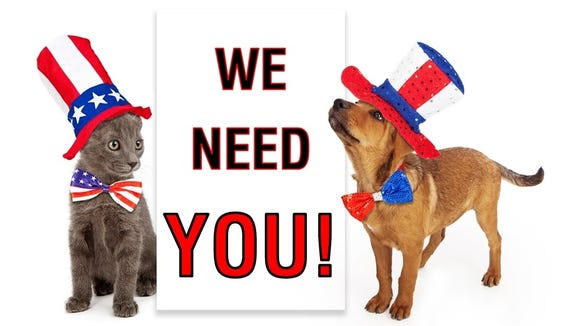 GCHS is looking for people who want to make a difference for the area's animals.