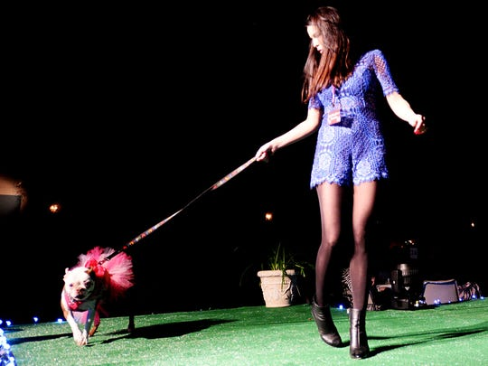 The 9th annual Best In Sheaux live runway dog show