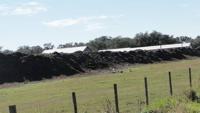 The manure solids at Dakin Dairy are mixed with landscape materials to create a compost that helps to enrich the soil on the Daikin Dairy Farm in Florida.The liquid portion is removed and diluted and used to water and feed nutrients to the special grasses the family raises for their cows.