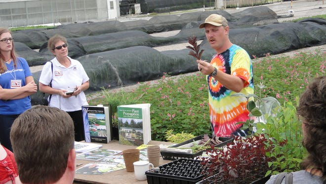 Mike Gates demonstrates how plants are started in the greenhouses at McKay. He propagates some plants and many others begin their life in a new type of cell that expands with it is watered. The result is the plants are handled less and develop faster.