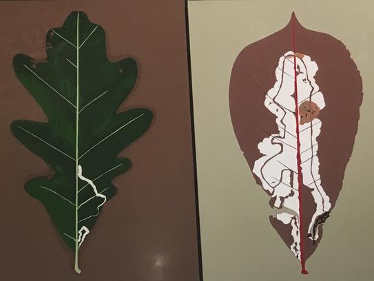 "Detail from ""Leaf Miner's Leaves"" by Susan Hoenig"