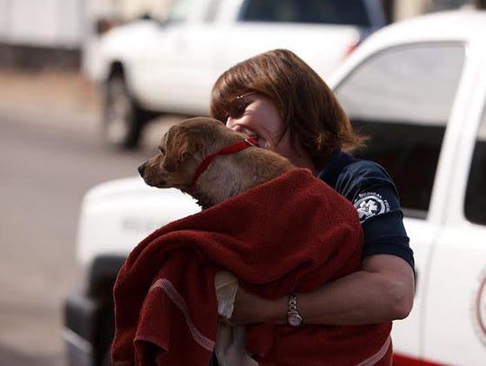 Arizona Humane Society's Emergency Team receives approximately