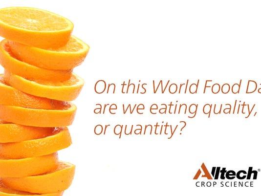 WSF-World-Food-3.jpg