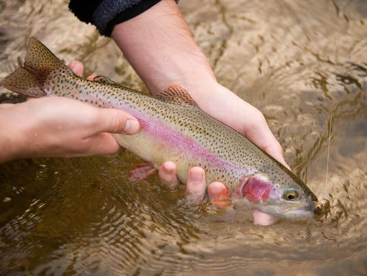 112209 trout fishing-50.jpg