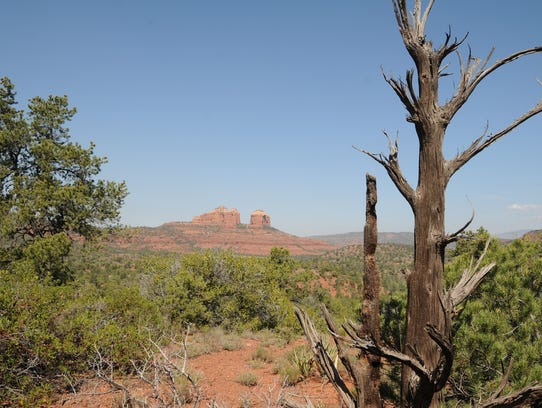Cathedral Rock is visible in the distance from the