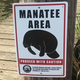 Manatees spotted in Acadiana, signs going up