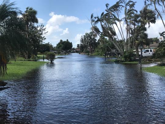 "Lisa McGarity described Hurricane Irma as a ""hurricane on steroids."""