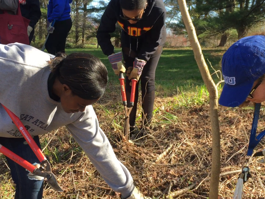 University of Delaware students came to clean up parts