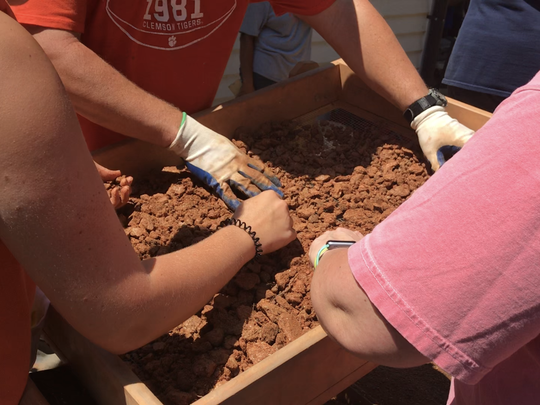 Clemson students pick through dirt found on the site