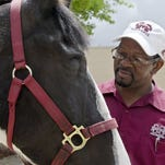 Tender, a horse owned by Henry Wilson of Columbus, is one of the first patients to benefit from a new operating procedure developed by veterinary professors at the Mississippi State University College of Veterinary Medicine. The method minimizes surgical stress and complications. Tom Thompson, MSU College of Veterinary Medicine/Special to The Clarion-Ledger