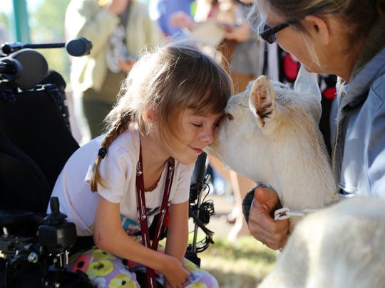 Shriners Hospitals for Children patient Brayden Dame meets Bee. Bee, a goat who lost a limb to a bone infection visited with patients with limb deficiencies.