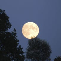The Manitowoc County 4-H Leaders Association's Camp TaPaWingo will host its annual Harvest Moon Camp for children ages 7-14 on Oct. 23-25.