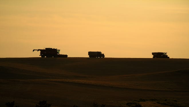 A combine near the Missouri Breaks at harvest north of Winifred