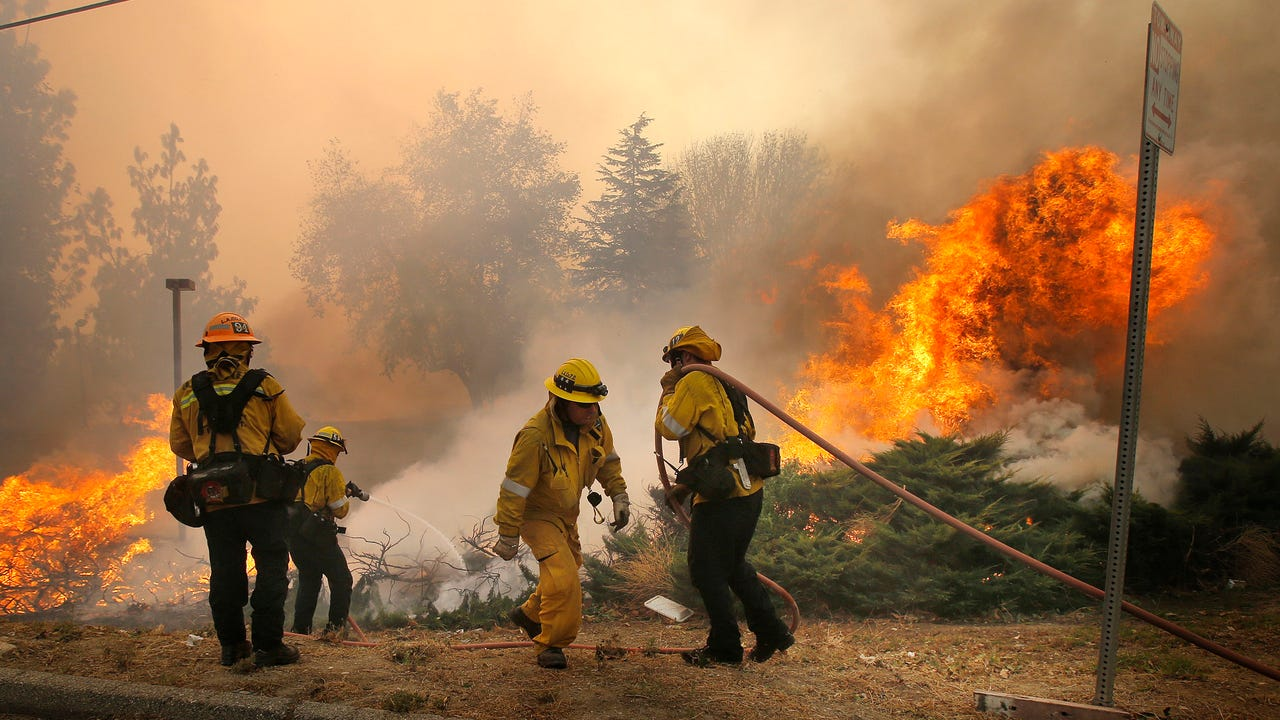 People, animals flee California wildfire