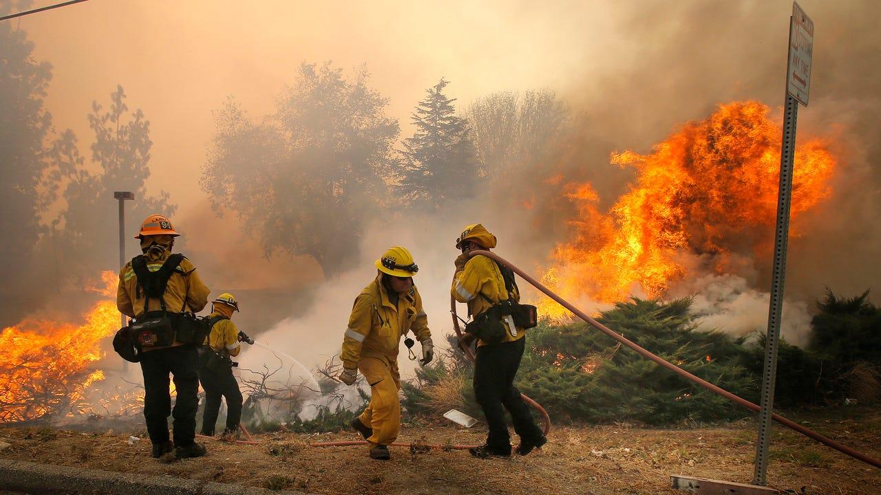 People, animals flee California wildfire