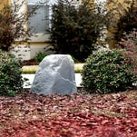 Rock on with low-maintenance landscaping