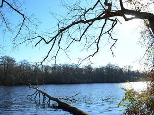 Pocomoke River