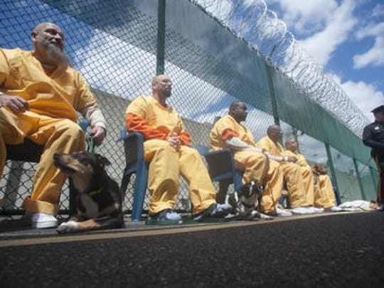 Camden County Jail inmates sit with puppies being trained