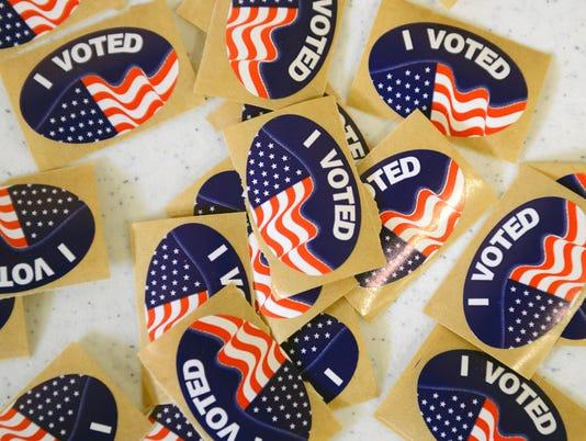 Voting Michigan Primary