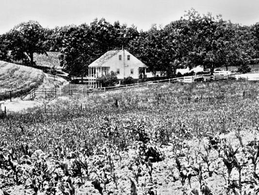 House-AND-FIELD.JPG
