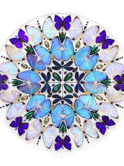 Artist Christopher Marley turns elements of nature  into contemporary art pieces. Marley arranges masses  of insects like these butterflies and tropical beetles  to create a gorgeous and dramatic kaleidoscope.