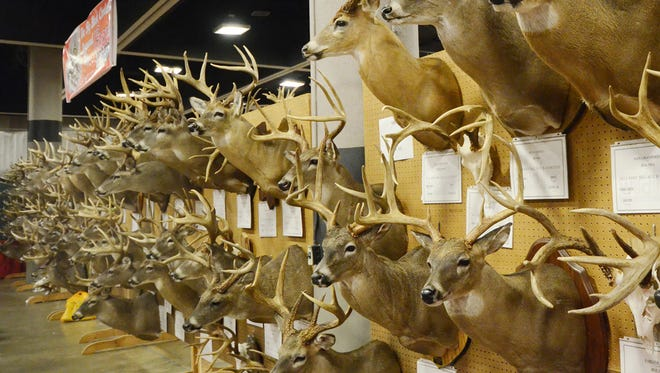 The Mississippi Wildlife Extravaganza Big Buck Contest draws hundreds of entries each year and this year it could feature some of the best of show winners from the past 30 years.