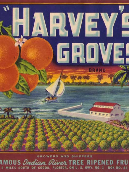 florida frontiers citrus labels as works of art