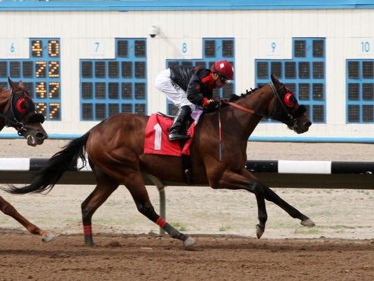FMN Horses Recap 0424