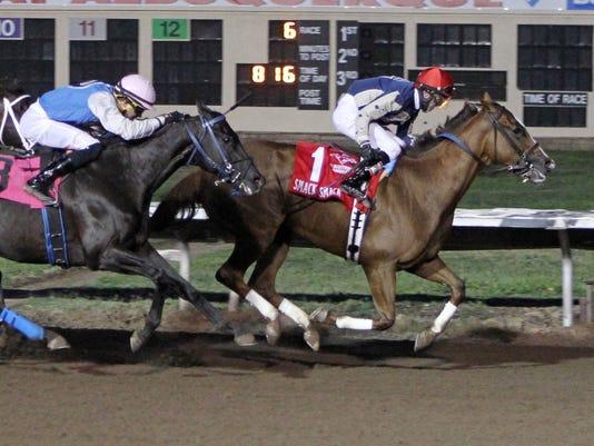 FMN Horses 0807