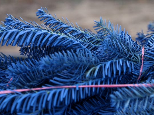 The dyed branches of a Christmas tree at the Wolosek