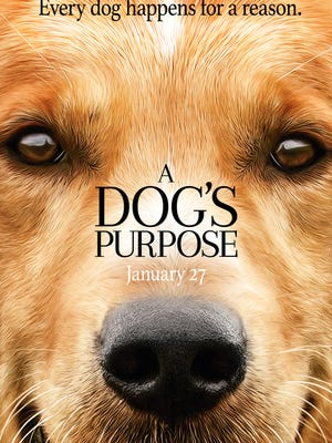 The poster for 'A Dog's Purpose,' in theaters Friday.