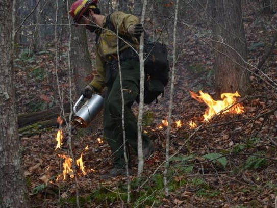 Firefighters clean up the edge of the Clear Creek fire