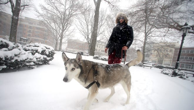 Mike Ebeling and his Husky, J.J. walk through the Morristown Green as the first winter storm of the season is predicted to drop more than a foot of snow in parts of New Jersey.   February 9, 2017, Morristown, NJ.