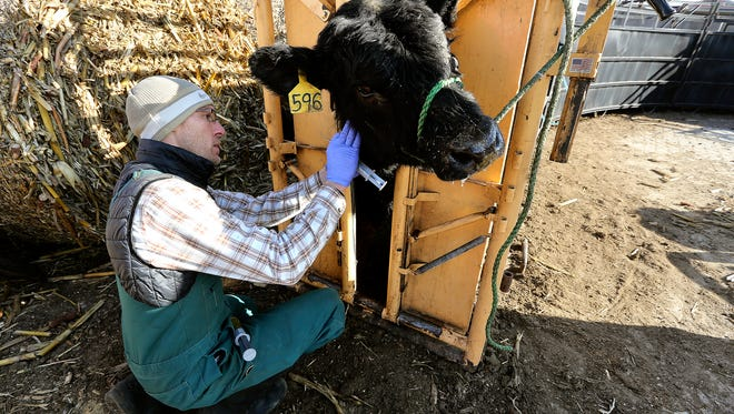 Producers are already working closely with a veterinarian to find the right treatment when cattle get sick, and value their expertise in the the responsible use of antibiotics.