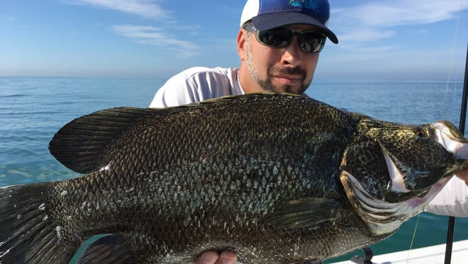 Tony Leyva with a triple tail, which he caught while fishing with Capt. Christian Sommer.