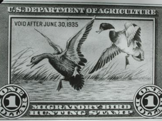 636250883591984669-duck-stamp.png