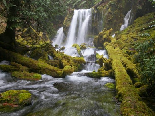 Downing Creek Falls in Willamette National Forest near