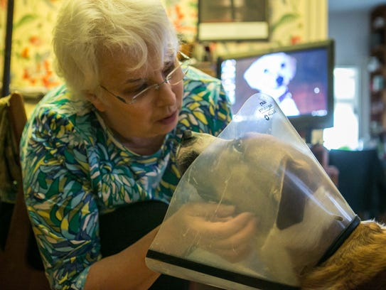 Diane White pets her dog Stella who is recovering from