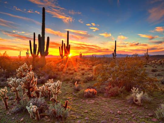 why arizona doesn t observe daylight saving time